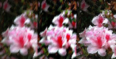 (left) Original image<br/>(centre) Deblurred output by edge sharpening technology<br/>(right) Deblurred output by CUHK's image deblurring technology