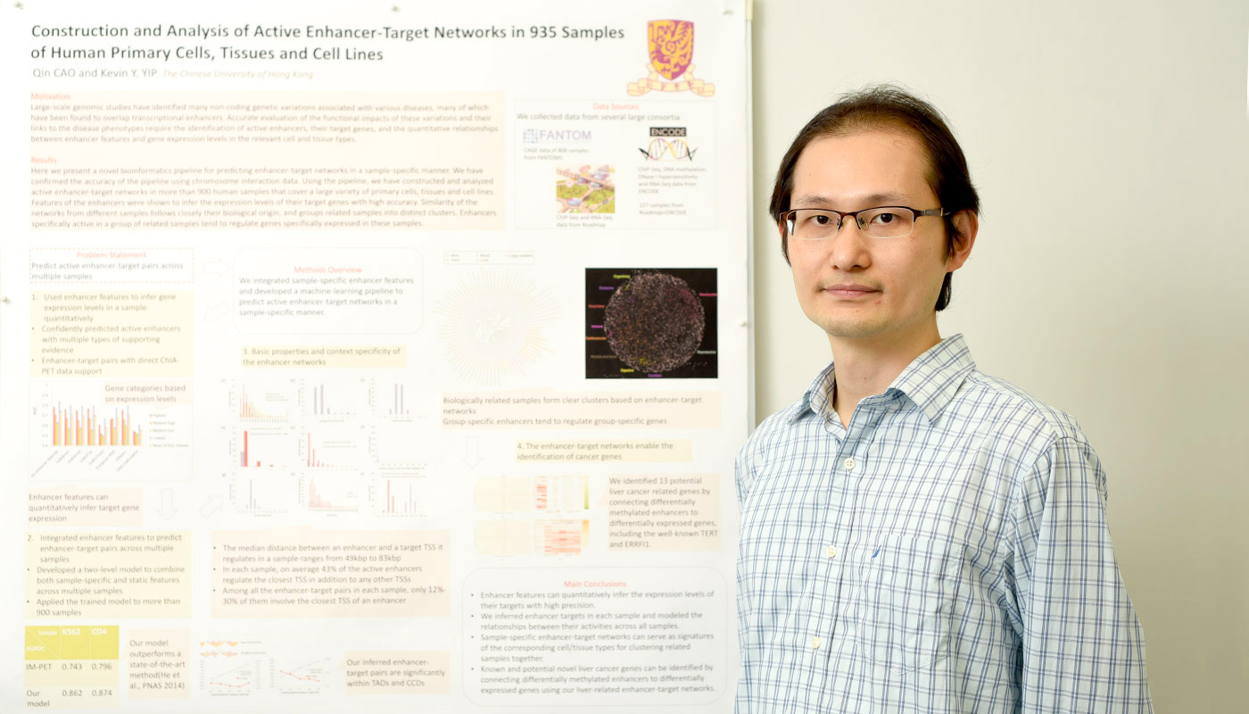 Prof. Kevin Yip studies gene enhancers in DNA in human cell and tissue samples, to explain the consequences of mutations in enhancers