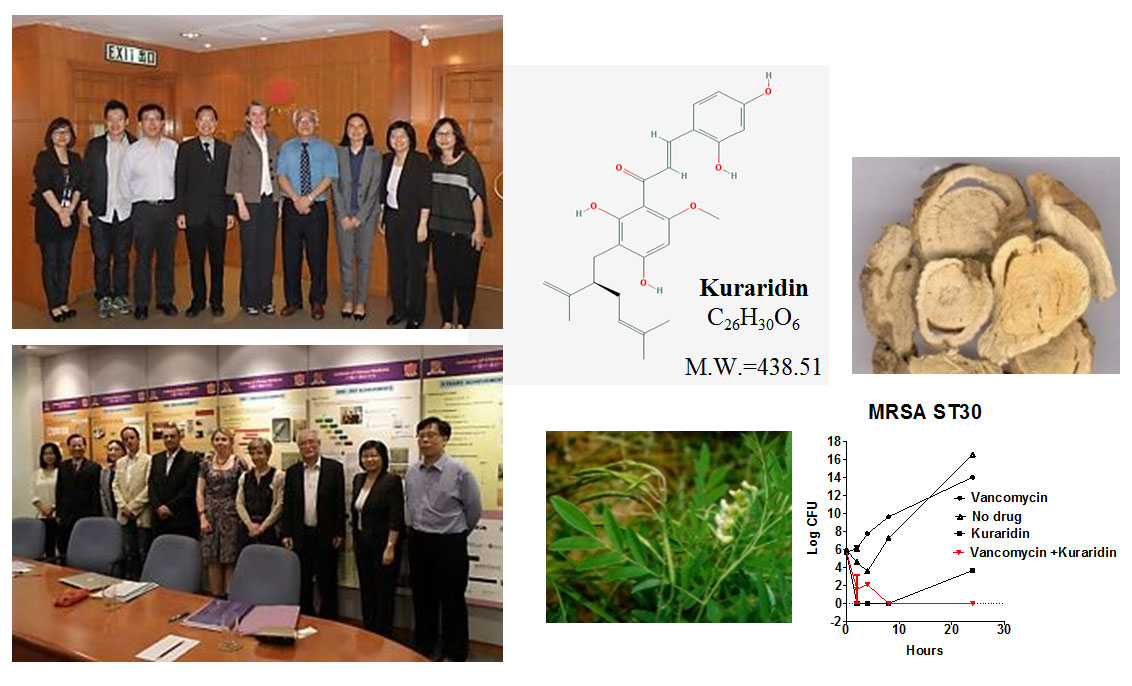 Institute of Chinese Medicine - Distinguished Projects in China