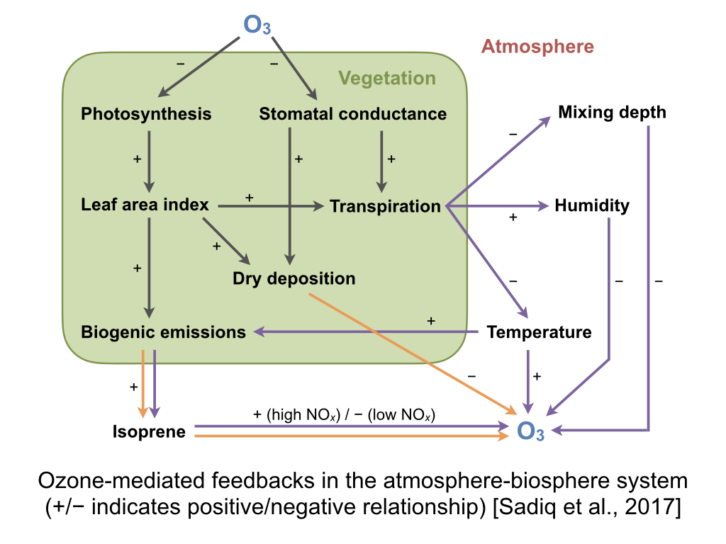 Tai group for atmosphere biosphere interactions fig1 ccuart Choice Image