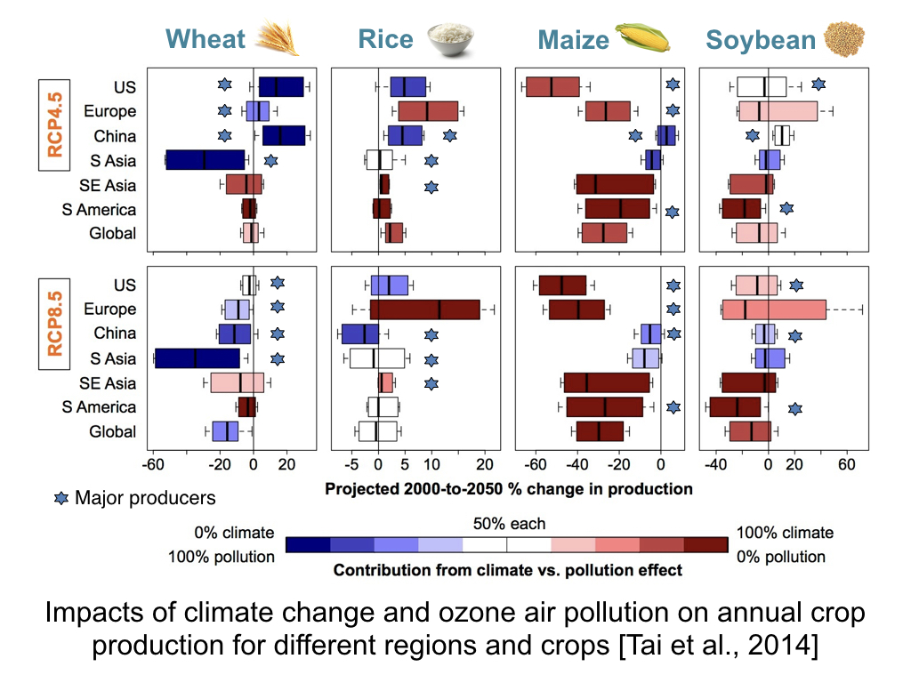 global food security under climate change essay Food security and the targeted public distribution system in and the targeted public distribution system in and climate change food security is said to.