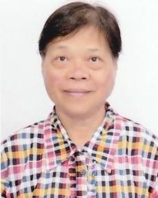 image of Prof. WONG Hoi Chu