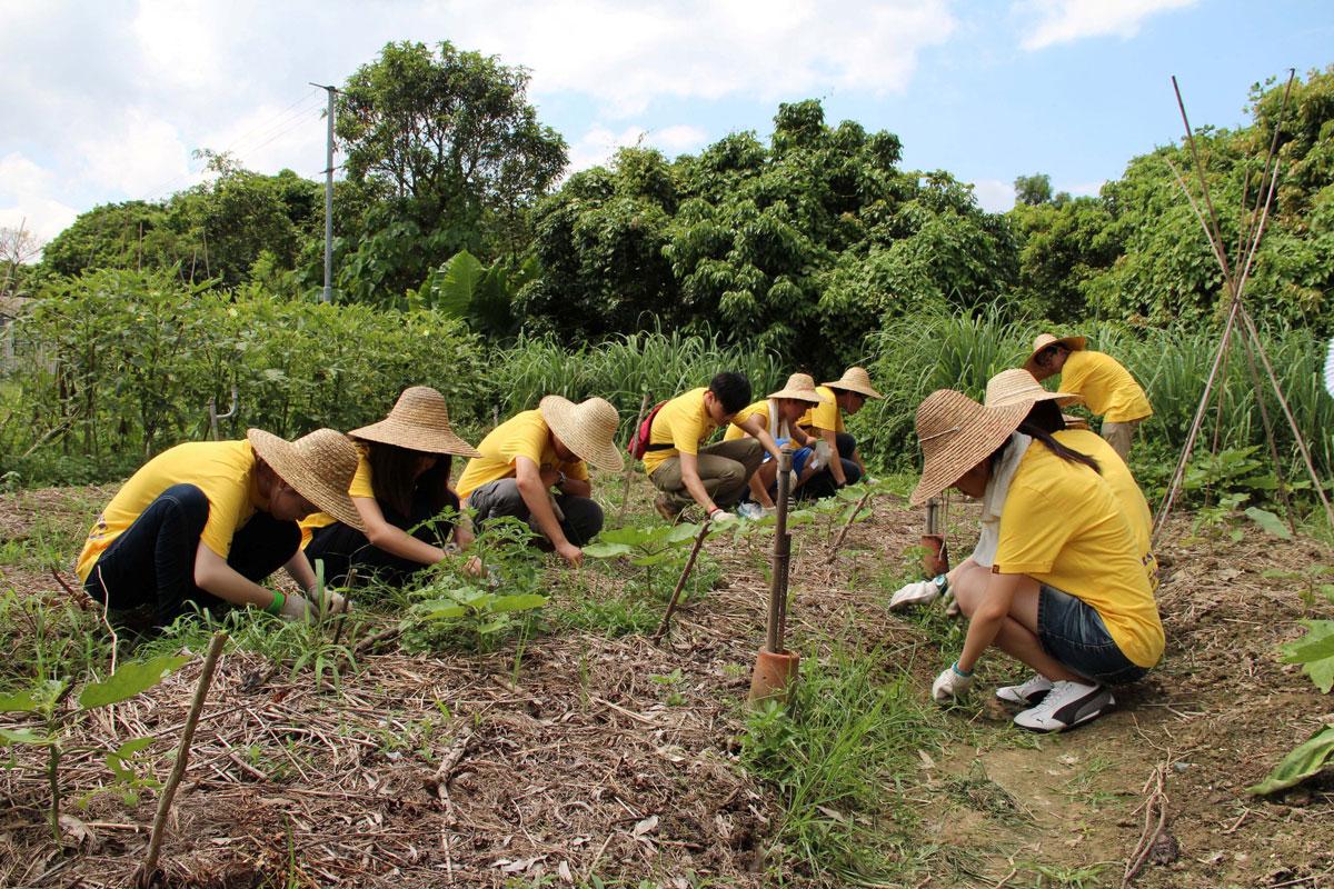 Community outreach excursions, <br/>C.W. Chu College (2012)